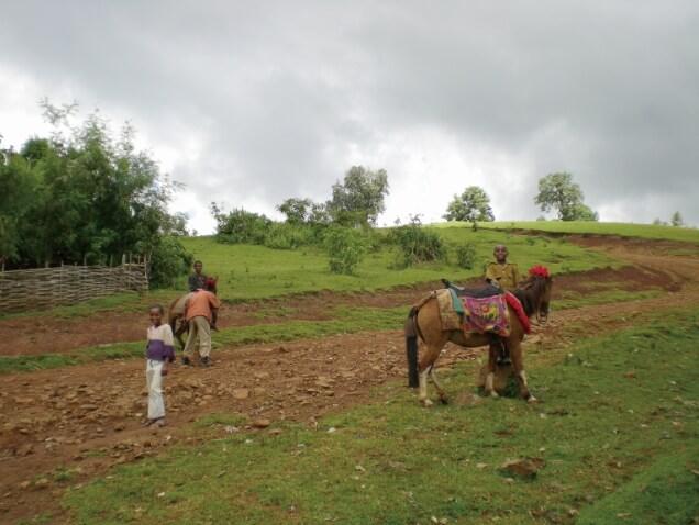 ESSのあゆみ エチオピア